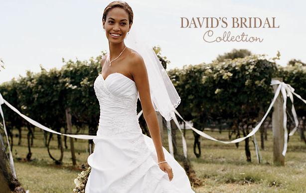 классическая коллекция David's Brida картинка